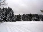 CJ in the snow
